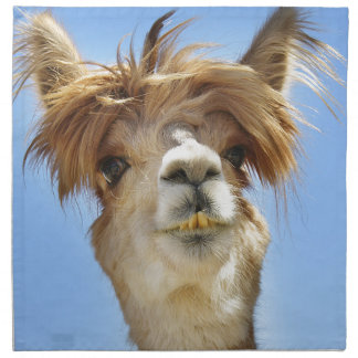 Alpaca with Crazy Hair Napkin