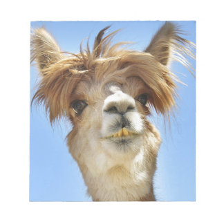 Alpaca with Crazy Hair Notepad