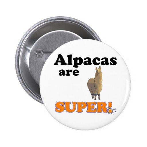 alpacas are super button