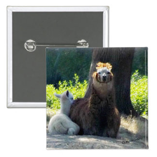 Alpacas - Mom Baby Button