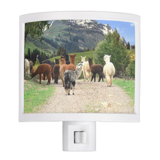 Alpacas Night Light
