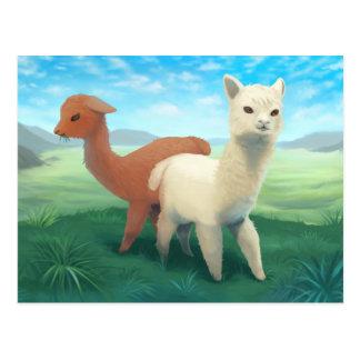 Alpacas on the Meadow - cute animal painting Postcard