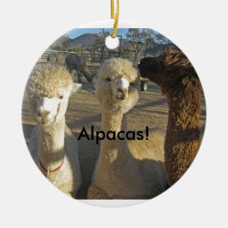 Alpacas! Ornament