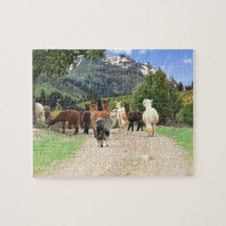 Alpacas Puzzle