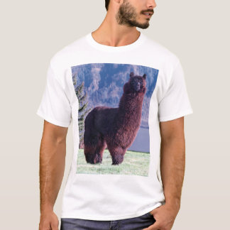 alpacas rule T-Shirt