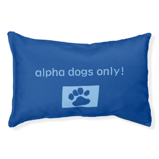"""""""Alpha Dogs Only"""" Pawprint Fun Stylish Modern Pet Bed"""