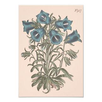 Alpine Bell Flower Botanical Illustration Card