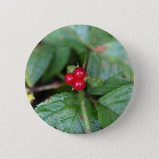 Alpine currant (Ribes alpinum) 2 Inch Round Button