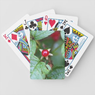 Alpine currant (Ribes alpinum) Bicycle Playing Cards
