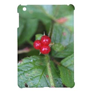 Alpine currant (Ribes alpinum) Case For The iPad Mini