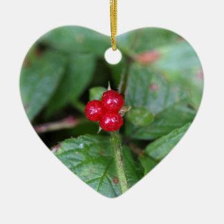 Alpine currant (Ribes alpinum) Ceramic Heart Ornament