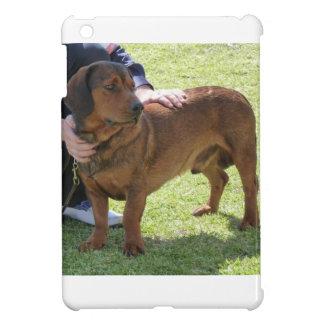 Alpine Dachsbracke Dog iPad Mini Case