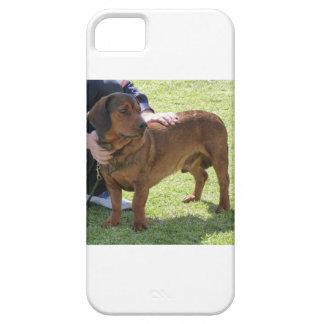 Alpine Dachsbracke Dog iPhone 5 Case