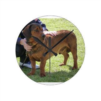 Alpine Dachsbracke Dog Round Clock