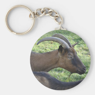 Alpine goat basic round button keychain
