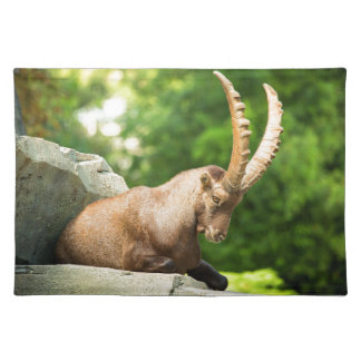 Alpine Goat Takes A Break From Climbing Placemat
