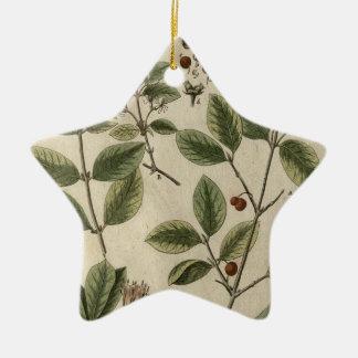 Alpine Honeysuckle Ceramic Ornament