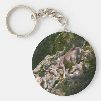 Alpine ibex in the mountain keychain
