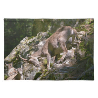 Alpine ibex in the mountain placemat