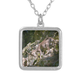 Alpine ibex in the mountain silver plated necklace