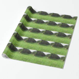 Alpine landscape with green meadow