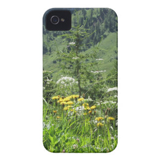 Alpine landscape with wildflowers and firs Case-Mate iPhone 4 case