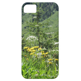 Alpine landscape with wildflowers and firs iPhone 5 case