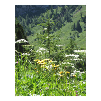 Alpine landscape with wildflowers and firs letterhead