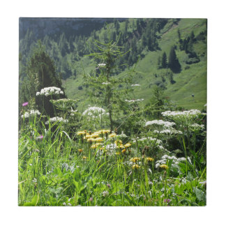 Alpine landscape with wildflowers and firs tile