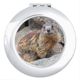 Alpine Marmot Compact Mirror