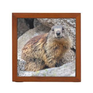 Alpine Marmot Desk Organizer