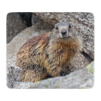 Alpine Marmot Glass Cutting Board