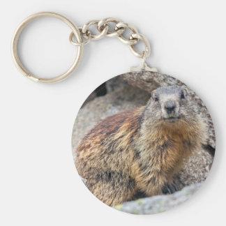 Alpine Marmot Keyring Basic Round Button Keychain
