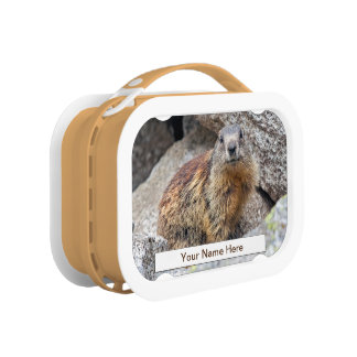 Alpine Marmot Lunch Box (Enter Your Name)