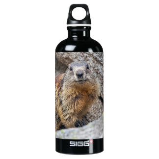 Alpine Marmot Water Bottle