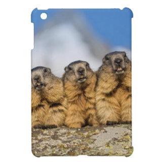 Alpine Marmots iPad Mini Cover