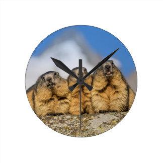 Alpine Marmots Round Clock