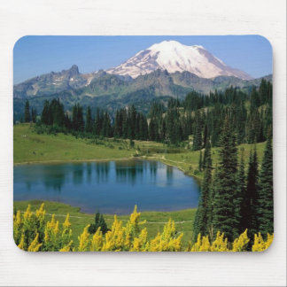 Alpine Scenic, Washington Mouse Pad