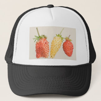 Alpine Strawberry Trio Trucker Hat