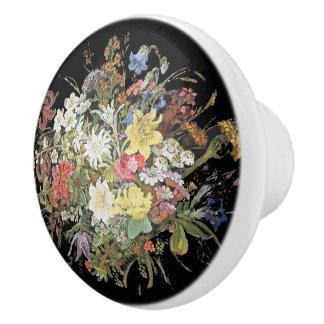 Alpine Wildflower Flowers Edelweiss Knob