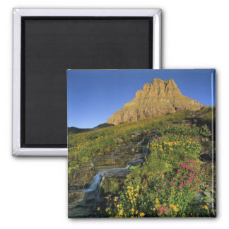 Alpine wildflowers & Mt Clements at Logan Pass Square Magnet