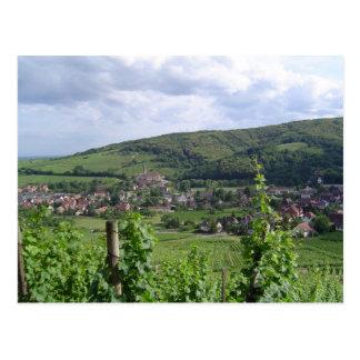 Alsace vineyards postcard