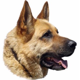 Alsatian German Shepherd dog Photo Sculpture