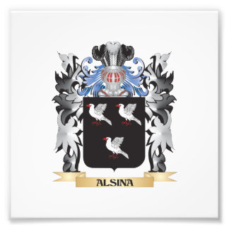 Alsina Coat of Arms - Family Crest Photograph