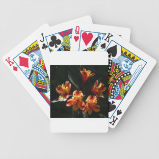 alstroemère bicycle playing cards