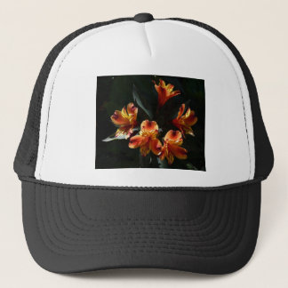 alstroemère trucker hat