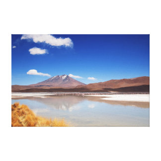 Altiplano landscape with volcano in Bolivia Canvas Print