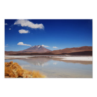Altiplano landscape with volcano in Bolivia Poster