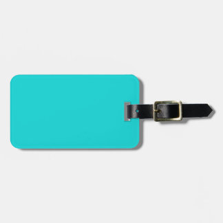 Altruistically Invaluable Turquoise Blue Color Luggage Tag