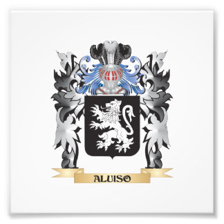 Aluiso Coat of Arms - Family Crest Art Photo
